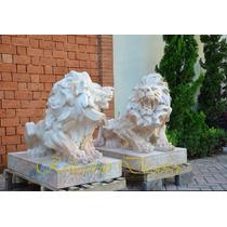 Par Escultura Em Marmore Carrara Leão Rosa Rica Em Detalhes
