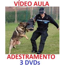 Cocker!!! Para Todas As Raças, Adestramento De Cães 3 Dvds
