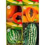 Kit 4 Pacotes Sementes Frutas Melancia E Mamão Lacrados