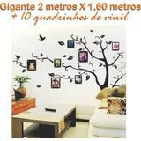 Adesivo Parede Árvore Foto Retrato Família 2 Metros Gigante