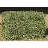 Fardos Alfalfa,pastura,paja Y Balanceados,avena,megafardos