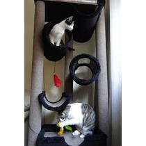 Arranhador, Arvore Para Gatos, Puleiro, Brinquedos De Gatos,