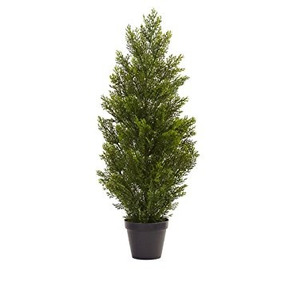 rbol de navidad casi mini natural pino cedro interior ex