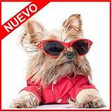 Mega Kit Patrones Moldes Ropa Perros Juguetes Accesorio Cama