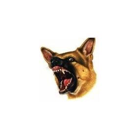 Previene Ataques Mordidas Perros Ahuyentador Ultrasonic Maa