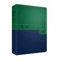 Bíblia Nvi Bilíngue Português-inglês Luxo Verde E Azul