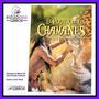 Chamanes Chamanismo Chaman Pachamama Medicina Natural Libro