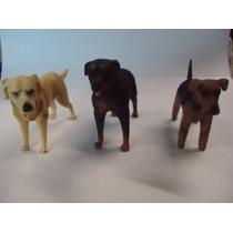 Coleção 12 Miniaturas De Cães De Raça Em Pvc (resina) 9 Cm