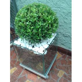Buxinho No Cachepot De Vidro 25x25x25cm Com Rodinhas