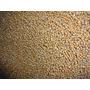 Osmocote Plus 15-9-12 Fertilizante Adubo Liberação Lent 1 Kg