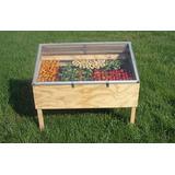 Curso Como Fazer Secador Solar Para Frutas E Hortaliças