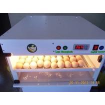 Chocadeira Automática, 116 Ovos