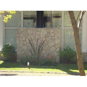 Piedra Laja Neuquen Irregular Revesitmiento Piso/pared