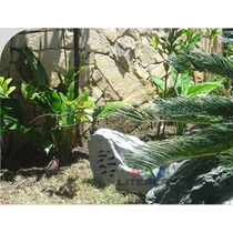 Caixa Acústica Jardim Pedra Som Ambiente 40watts Rms