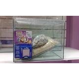 Hamstera De Vidrio+comida+viruta+bloque Mineral. Zona Sur