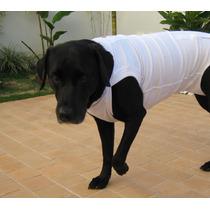 Roupa Pós-cirúrgica Cães N.10 -67 A 73cm.(cernelha A Cauda)