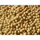 1 Kg Semillas De Soya O Soja - Glycine Max Sin Tratamiento