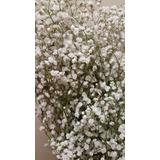 Floreria Vara De Flores De Ilusión