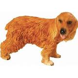 Miniatura Cão Cocker Ingles