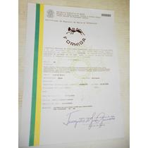 Lindissima Faca Formiga Cabo Capa Projetil .50 Certificada