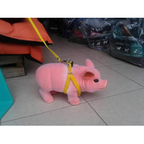 Pechera Para Puerquitos Mini Pig