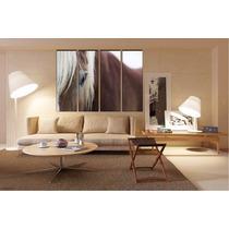 Caballo Bastidor En Canvas De 120x90 Cm Exelente Envio S/c