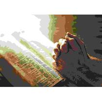 Poster Gospel Leitura Da Biblia - A-3 Laminado Frete Grátis