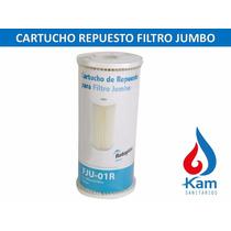 Repuesto Cartucho Rotoplas Filtro Jumbo -zona Sur