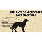 Chip Microchip Identificacion Mascotas