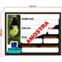 500 Placas De Gaiola, Identificação Pássaros +brinde!!!