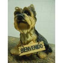 Escultura Em Resina - Cachorro Yorkshire- Bienvenido
