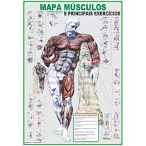 Mapa Músculos E Principais Exercícios - 81 X 117 -frete 4,90