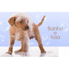 Banho E Tosa Para Todas As Raças Em Dvd! Pague Mercado P