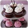 Cupcakes + Dulces Mini Shots + 1062 Recetas Pasapalo