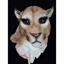 Cabeza De Animal De Puma Decorativa En Resina Gmfr019