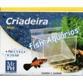 Criadeira Mr Pet Mini Para Peixes Vivíparos - Aquários