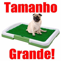 Sanitário Canino Tapete Higiênico Grama Sintética 60x53x4 Cm