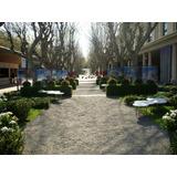 Piedra Binder Para Jardin X 30 Kg Bolsa Sellada