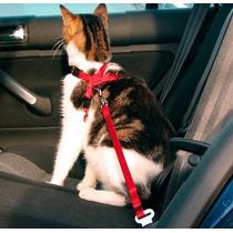 Correa Cinturón De Seguridad Auto Carro Para Perro Gato