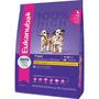 Eukanuba Puppy Medium/large 15kg + Frontline Envio S/c Caba