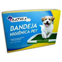 Banheiro Para Pet Cachorro
