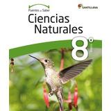 Puentes Del Saber Ciencias Naturales 8 Basico
