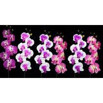 6 Orquideas Artificiais - Flores Atacado Artificial Arranjo