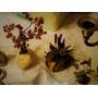 Artesania En Piedras. Dos Árboles De La Vida Y Un Aloe Vera