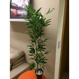 Planta Artificial,bambu Reto,vaso Decoração,flores,arranjos