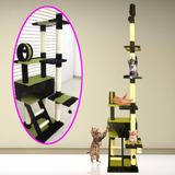 Gimnasio Y Rascador Para Gato Animal Planet + 6 Pagos