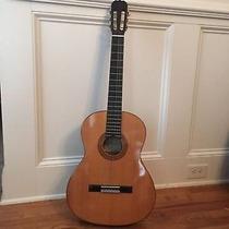 Guitarra Hohner Acustica Hc 06