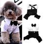 Roupa De Gala - Noivo Casamento Festa Cachorro Pet Dog Gato