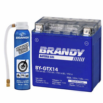 Bateria Kasinski Mirage 650/250 Gel Brandy By-gtx14 + Rep