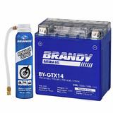 Bateria Suzuki Dl 1000 V-strom Gel Brandy By-gtx14 + Rep